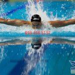 5 bước luyện tập kỹ thuật bơi bướm